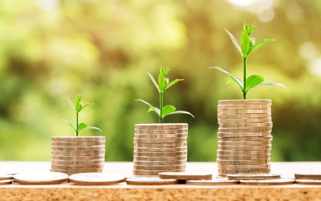 Creixement econòmic o no?